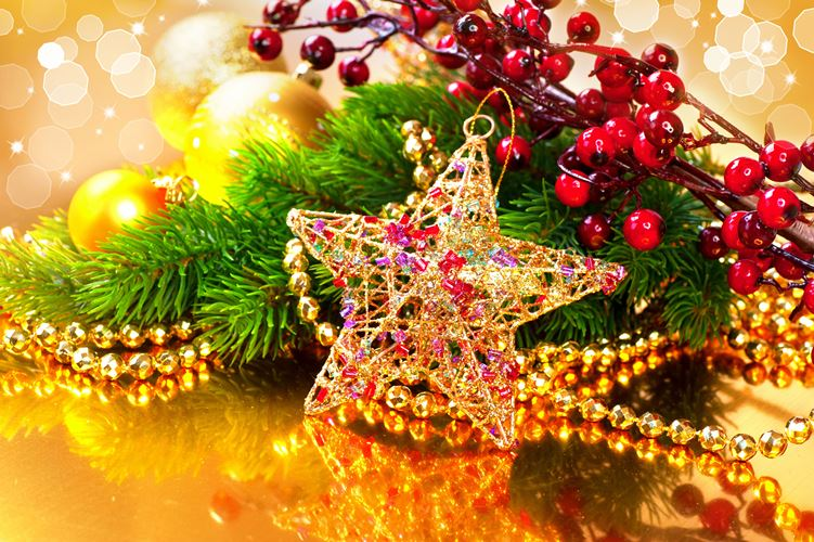berry-ornaments-pretty-christmas-wallpaper 1-1